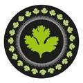 Coriander logo